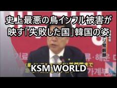 【KSM】史上最悪の鳥インフル被害が映す「失敗した国」韓国の姿 朝鮮日報記事から