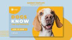 Banner template concept for pet shop Fre. Food Banner, Web Banner, Banners, Food Template, Banner Template, Pet Shop, Flyer A5, Minimal Web Design, Ux Design