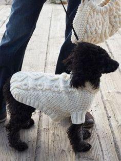 No Bones About It Dog Coat I love the dog pattern on the back!