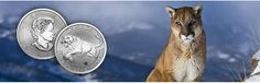 """The Royal Canadian Mint (RCM) has launched a new """"Predator Series"""" -  99.99% pure silver predator coins series. Shop online now to add this Silver Predator Coin to your collection of bullion today! For more info Call Us at (855) 927-5557"""