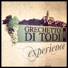 Our local white wine known since the Roman times : Grechetto di Todi