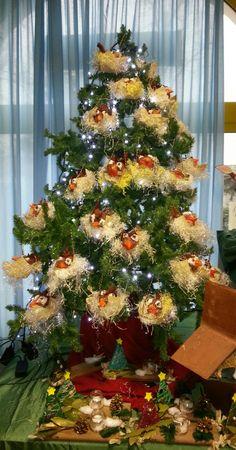 """Pettirossi nell' albero del """"Pettirosso"""" dicembre 2016"""