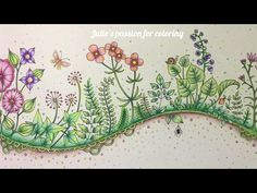 ENCHANTED FOREST by Johanna Basford - Faber Castell Polychromos - color along - YouTube