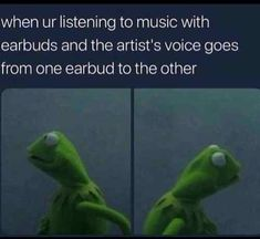 When You're Listening To Music With Earbuds And The Artist's Voice Goes From One Earbud To The Other #funny #meme