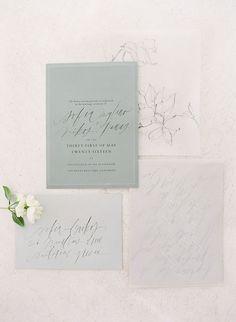 Paper suite by Tara