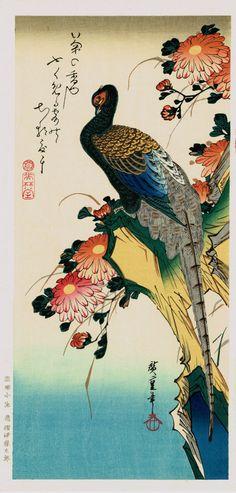 "Japanese Ukiyo-e Woodblock print Ando Hiroshige Flowers Birds Winds Moon ""Pheasant & Chrysanthemum"""