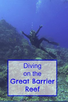 My adventures diving on the great barrier reef in Australia where we saw SHARKS, TURTLES and 1000's of fishy's!