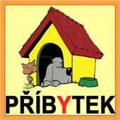 Pexeso: Vyjmenovaná slova B Fictional Characters, Languages, Ps, Children, School, Ideas, Idioms, Young Children, Boys