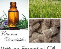 Vetiver Essential Oil, Vetiver Oil, Vetiver Oil Uses, Vetiver Oil Benefits - 100% Pure Authentic Vetiver EO