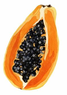 We love using papaya in products such as Facial Glow and our Mac & Pap Body Scrub, as it contains naturally occurring AHAs which work to naturally remove dead skin cells and exfoliate your skin. Watercolor Fruit, Fruit Painting, Watercolor Paintings, Acrylic Paintings, Painting Flowers, Colorful Paintings, Gouache Painting, Watercolours, Diy Painting