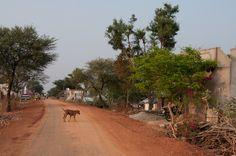 Na cestě do města Jagdalpur. | Flickr - Photo Sharing!