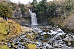 Thornton Force on Ingleton Waterfall Walk