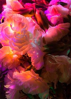 Garden Party by Michele Valdez http://www.michelevaldez.com