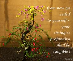 ... from now on ceded to #yourself ~ your >being's< profundity shall be tangible !