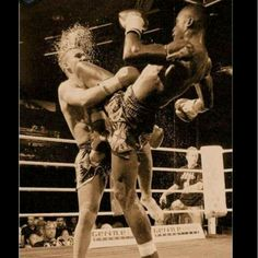 Muay Thai Knees!