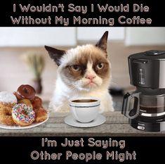 Grumpy Cat Coffee Me Grumpy Cat Coffee Memes Happy Coffee, Coffee Is Life, I Love Coffee, My Coffee, Morning Coffee, Coffee Talk, Coffee Lovers, Coffee Break, Monday Coffee