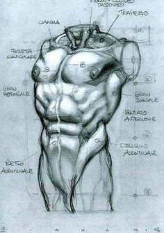 SIMONE BIANCHI - ANATOMICAL DRAWINGS via cgpin.com