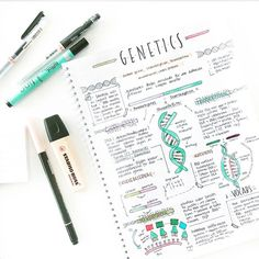 Cute genetics study notes // follow us @motivation2study for daily inspiration