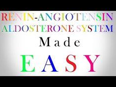 Renin Angiotensin Aldosterone System Made Easy | Nurse Video