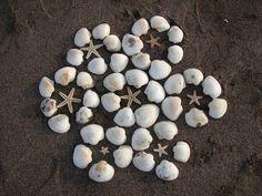 Shell Flower | par backintothefuture Shell Art, Beach Art, Shells, Flowers, Anna, Seashells, Beach Artwork, Conchas De Mar, Sea Shells