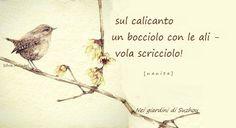 #haiku #nanita