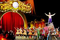 When we were little, we went to see the circus every year. I loved it!