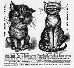 Cat in Vintage Advertisements