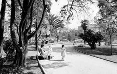 distrito federal Jardines del parque España en colonia Hipodromo
