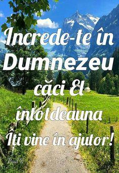 Vines, Calm, Artwork, Bible, Work Of Art, Auguste Rodin Artwork, Artworks, Arbors, Grape Vines