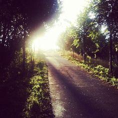 Good Morning Daydream, Good Morning, My Photos, Country Roads, Spaces, Instagram, Bom Dia, Buen Dia, Bonjour