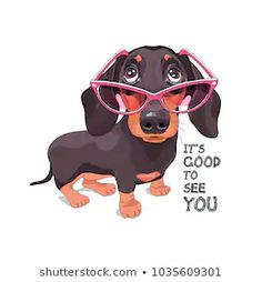 Find Dachshund Pink Glasses Vector Illustration stock images in HD and millions of other royalty-free stock photos, illustrations and vectors in the Shutterstock collection. Arte Dachshund, Dachshund Drawing, Dapple Dachshund, Dachshund Puppies, Dachshund Love, Dachshunds, Funny Dogs, Cute Dogs, Pug Cartoon