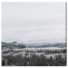 You'll love the 'Snow Squared' Photographic Print on Wrapped Canvas at Wayfair.co.uk - Great Deals on all Home Décor products with Free Shipping on most stuff, even the big stuff.