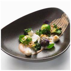 A huge congratulations to @n.henkel for the opening of his new restaurant @relaischateaux property Burg Schwarzenstein in Geisenheim, Germany. #food #foodie #foodart #foodporn #fourmagazine