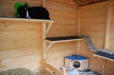 Our Customers – Runaround: Rabbit and Guinea Pig Runs Bunny Sheds, Rabbit Shed, Rabbit Run, Pet Rabbit, Rabbit Garden, House Rabbit, Guinea Pig Run, Guinea Pig Breeding, Guinea Pig House