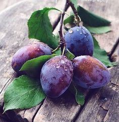 Nutrition To Lose Belly Fat Fruit And Veg, Fruits And Vegetables, Fresh Fruit, Purple Fruit, Green And Purple, Fruit Photography, Still Life Photography, Vegetables Photography, Grape Nutrition