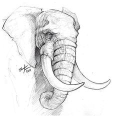 Elephants A Sunday Sketch. # Sketch # sketch # elephant # animals # # draw dr animals animal animal sketches A sketch Elephant Sunday Sketch draw Animals Pencil Sketch Drawing, Pencil Art Drawings, Art Drawings Sketches, Drawing Base, Drawing Ideas, Easy Drawings, Drawing Tips, Drawing Pictures, Reference Drawing