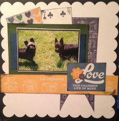 Life Captured - Scrapbook.com  This adorable doggy layout was created with the A Charmed Life Collection.