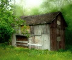 """Old Shed Abandoned""  Photography by Maggee G"