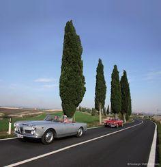 Alfa Romeo 2600 Spider Giulia & Giulietta Spider in der Toskana | Nostalgic Oldtimerreisen