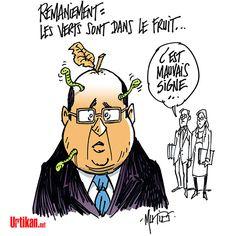 Remaniement ministériel : retour des écologistes aux affaires - Dessin du jour - Urtikan.net