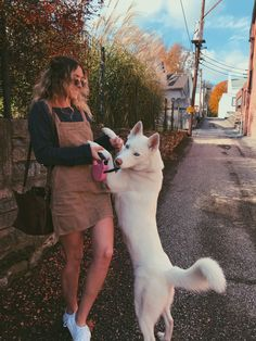 """Figure out additional relevant information on """"Siberian husky"""". Check out our site. All White Husky, White Husky Puppy, Cute Dogs Breeds, Cute Dogs And Puppies, Corgi Puppies, Dog Photos, Dog Pictures, Girl And Dog, Dog Photography"""