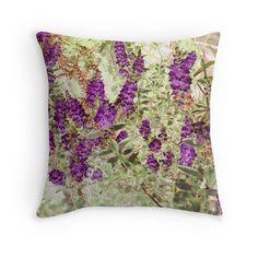 Hebe Lavender