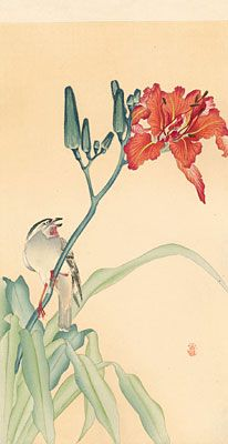 Ohara Koson  Yellow-throated bunting (Emberiza elegans)  on a flowering fire lily
