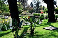 Buenos Aires - Jardin Japones http://www.intercoined.com/