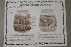 Build worm habitats, observe worms, and WRITE about it.