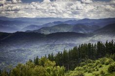 Would you love to call the Smoky Mountains in Tennessee home?