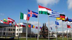 NATO websites hit in cyber attack over Crimea stance - MSN NEWS #NATO, #CyberAttack