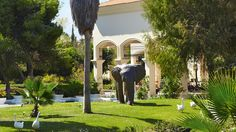 All inclusive, Family accommodation Peloponnese, Olympia Oasis