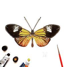"""Day 20 of my challenge #100daybutterflies #100daychallenge """"Heliconius Xanthocles"""" can be found from South America as far as the northern United States. #arts_help #art_we_inspire #imaginationarts #artdaily #craftsposure #challenge #art #painting #illustration #butterfly #handdrawnart #valleyofbutterflies #nature #phooftheday #doodle #love #bw #rtistic_feature #featuregalaxy #creative_instaarts  #me #worldbutterflies #happy #watercolor #acrylic #paint #artist_sharing #phanasu @craftsposure"""