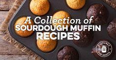 http://www.culturesforhealth.com/learn/sourdough/sourdough-muffin-recipes/